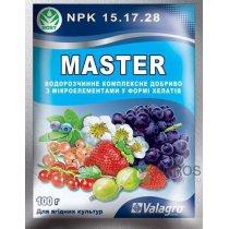 Комплексное минеральное удобрение для ягодных культур, Master (Мастер), 100г, Valagro (Валагро)