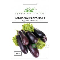 Семена баклажана Фарама F1, 30шт, Tezier, Франция, Семена Pro seeds