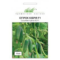 Семена огурца Кибрия F1, 10шт, Rijk Zwaan, Голландия, Семена Pro seeds