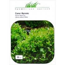 Семена салата Фриллис, 30шт, Seminis, Голландия, Семена Pro seeds