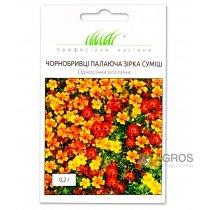Бархатцы мелкоцветковы, .Пылающая звезда смесь. 0.2г., Pro seeds